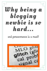 Why being a blogging newbie is so hard... and perseverance is a must!